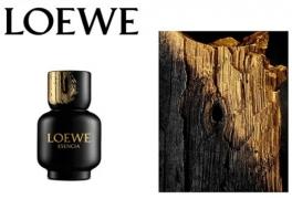 لوئوه اسنسیا پور هوم Loewe Esencia pour Homme